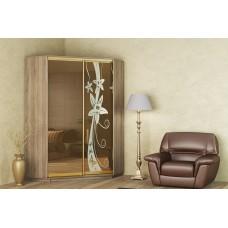 Угловой шкаф-купе с тонированными зеркалами и рисунком двухдверный Гарант