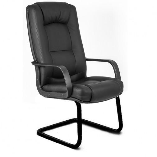 """Кресло """"Альберто"""" CF пластик RICHMAN (на полозьях с подлокотниками)"""